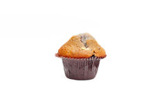 Blueberry muffin isolated Stock Images