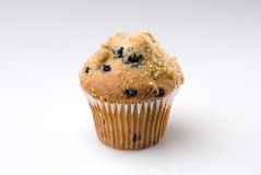 Blueberry Muffin Isolated on White Stock Image