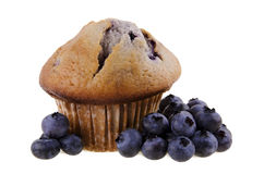 Blueberry Muffin. Isolated on white background Royalty Free Stock Photos