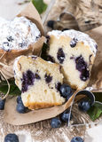 Blueberry Muffin (Macro Shot) Royalty Free Stock Image