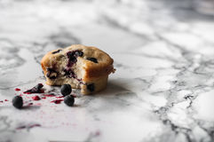 Blueberry muffin. On a marble table Stock Photos