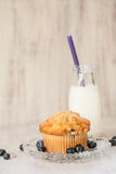 Blueberry Muffin on Plate With Glass Jug of Milk Stock Images