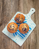 Blueberry Muffin Portrait Royalty Free Stock Photo