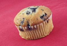 Blueberry Muffin on Red Background Stock Photography