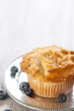 Blueberry Muffin on Silver Plate with Blueberries Royalty Free Stock Images