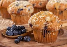 Blueberry Muffin and Spoonful of Berries on a Wooden Plate Stock Images
