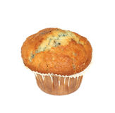 Blueberry Muffin On White Royalty Free Stock Photo