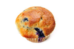 Blueberry Muffin on White Stock Image