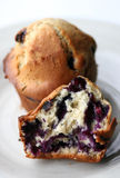 Blueberry muffins. Delicious blueberry muffins, fresh from the oven. Perfect for Menu«s (Short depth of field to add atmosphere royalty free stock photo