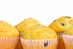 Blueberry Muffins Stock Images