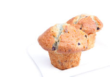 Blueberry muffins. On white plate Royalty Free Stock Image