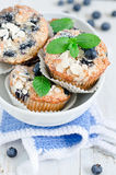 Blueberry Muffins. Homemade blueberry muffins with fresh bilberry Royalty Free Stock Photos