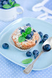 Blueberry Muffins. Homemade blueberry muffins with fresh bilberry Royalty Free Stock Photo