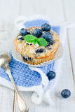Blueberry Muffins. Homemade blueberry muffins with fresh bilberry Royalty Free Stock Image