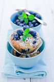 Blueberry Muffins. Homemade blueberry muffins with fresh bilberry Royalty Free Stock Images