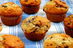 Blueberry muffins. On blue plaid tablecloth Royalty Free Stock Images