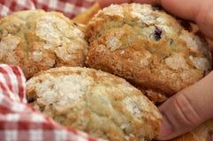 Blueberry Muffins in Basket. Man's Hand Grabbbing for Blueberry Muffins in red & white checkered gingham basket Stock Photos