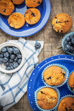 Blueberry muffins on Stock Photography