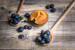 Blueberry muffins with blueberries on wooden spoons and wooden b Stock Photography