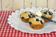 Blueberry muffins with butter Royalty Free Stock Photo