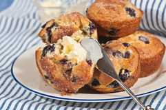 Blueberry muffins with a butter spreader Stock Photos