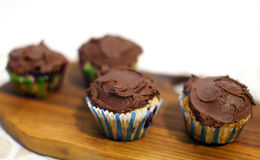 Blueberry muffins with chocolate butter icing Stock Photos
