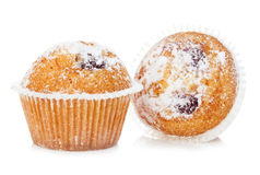 Blueberry muffins close-up isolated on a white background. Royalty Free Stock Image