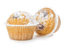 Blueberry muffins close-up isolated on a white background. Stock Images