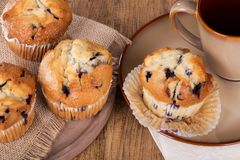 Blueberry Muffins and Coffee Cup Stock Photography