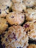 Blueberry Muffins with crumble topping Royalty Free Stock Photography