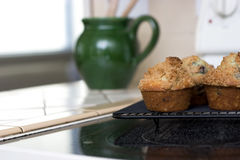 Blueberry Muffins with Crumbly Tops Royalty Free Stock Image