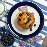 Blueberry Muffins. Delicious Homemade blueberry muffins with fresh blueberries. Selective focus stock images