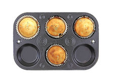 Blueberry Muffins Homemade Baking Pan Stock Image