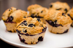 Blueberry muffins homemade dessert. These are some delicious, healthy, homemade blueberry muffins, made using only natural ingredients Royalty Free Stock Image