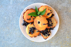 Blueberry muffins. Royalty Free Stock Image