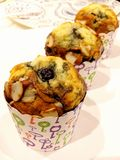 Blueberry muffins. Homemade blueberry muffins from oven Stock Photography