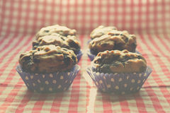 Blueberry muffins Royalty Free Stock Photography