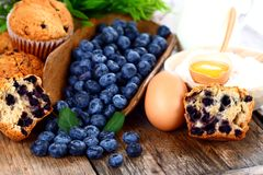 Blueberry muffins with ingredients Stock Photos