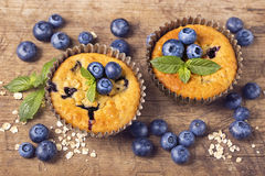 Blueberry muffins. In old metal cupcake holder Royalty Free Stock Image
