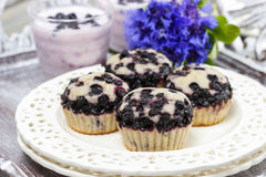 Blueberry muffins. Party table Stock Photo
