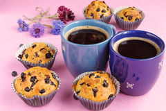 Blueberry muffins, two cups of coffee and cornflowers on pink ba. Ckground. Close up Royalty Free Stock Photos
