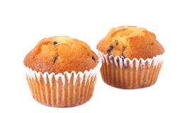 Blueberry muffins on white Stock Photo
