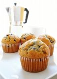 Blueberry muffins on white background Stock Image
