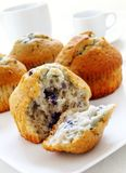 Blueberry muffins on white background Royalty Free Stock Photos