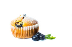 Blueberry muffins  on white Royalty Free Stock Photo
