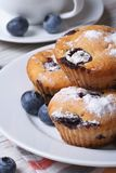 Blueberry muffins on a white plate and coffee vertical Royalty Free Stock Photos