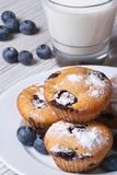 Blueberry muffins on a white plate and milk closeup vertical Royalty Free Stock Photos