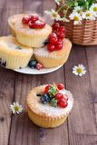 Blueberry muffins. In the white plate on wooden table Royalty Free Stock Image