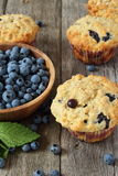 Blueberry muffins on wooden board. Blueberry muffins and oatmeal on wooden board Royalty Free Stock Image