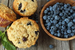 Blueberry muffins on wooden board Royalty Free Stock Image